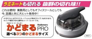 kadomaru_p_img1